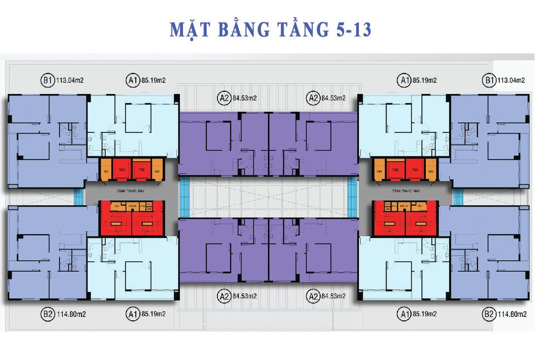 tang 5 - 13 Navita